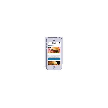 Pocket Software ordreoptagelse ved bordet